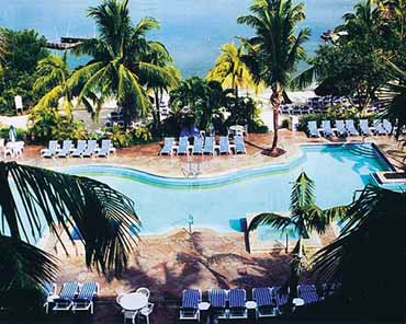 View of the Swimming Pool at the Marriott Key Largo Bay Beach Resort